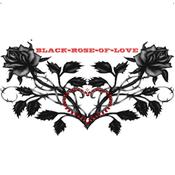 black-rose-of-love