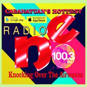 Radio NE FM 100.3